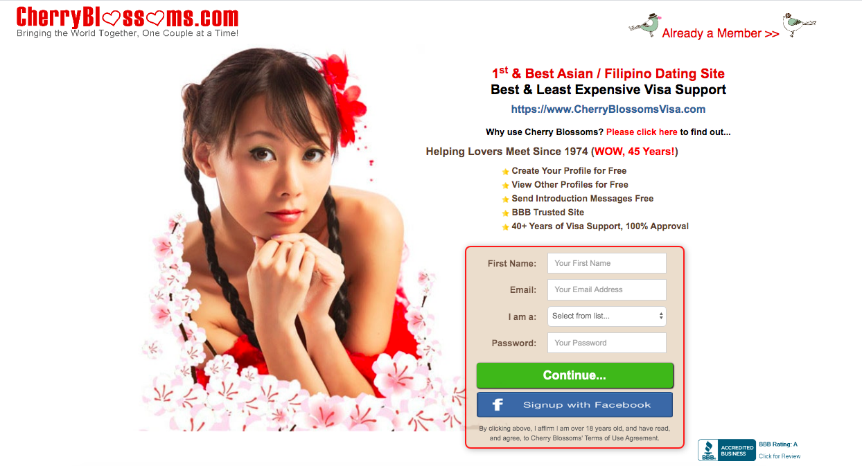 main page CherryBlossoms